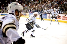 Hershey Bears Forward Matt Watkins