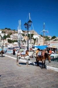 Vehicles are banned on Hydra, Greece. Donkeys only.